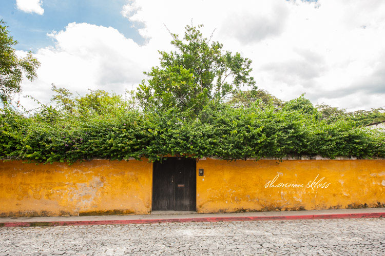 wedding antigua guatemala shannon skloss photography-25 copy