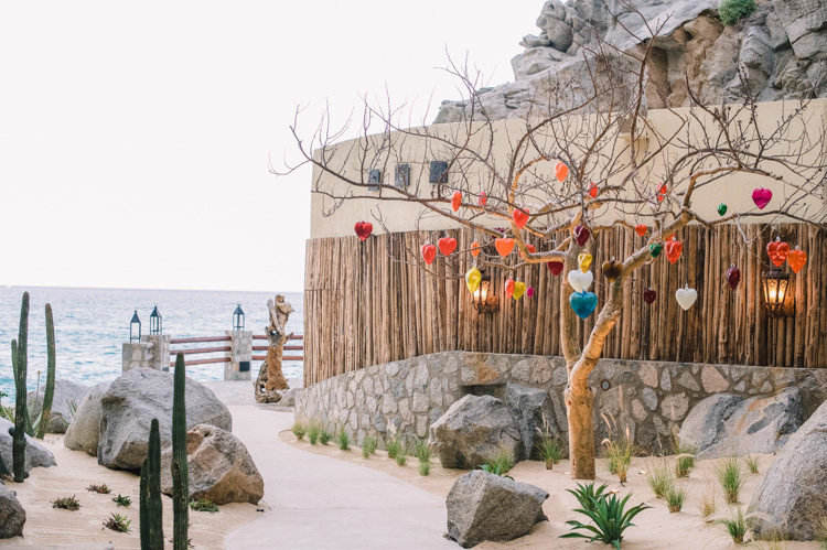 cabo-wedding-photographer-resort-pedgregal-shannon-skloss-photography-6