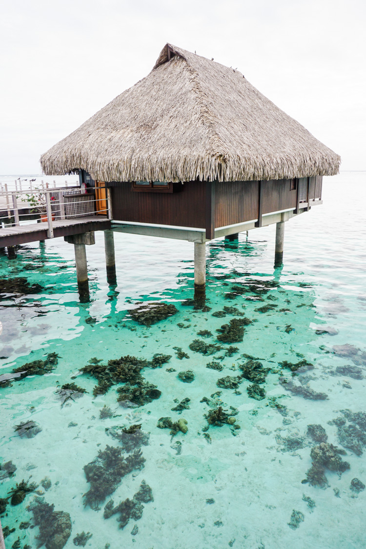 Our overwater hut at the Hilton Moorea hotel