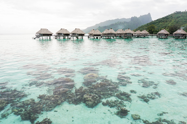 Overwater huts at the Hilton Moorea by Shannon Skloss Photography