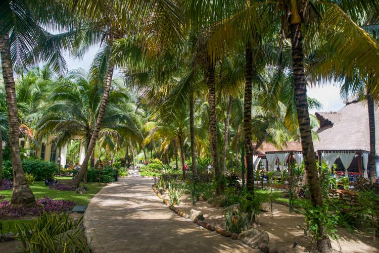 Lindsey Aaron El Dorado Wedding Riviera Maya-3