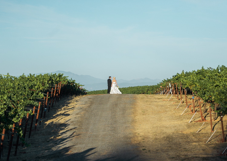 lexi-andrew-sebastopol-california-wedding-photographer-vine-hill-house-104