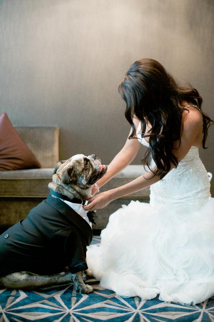 joule-dallas-wedding-photographer-shannon-skloss-25